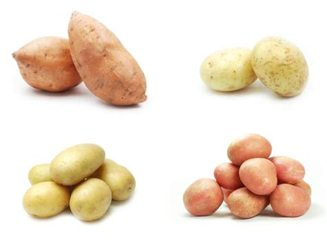 carbohydrates potatoes sweet potatoes white sweet potato nutrition