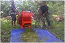 Mesin Pencacah Rumput Untuk Pakan Sapi mesin pencacah pelepah daun sawit untuk pakan ternak sapi