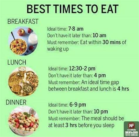 What Is Your Ideal Meal by Healthy Tips For Students