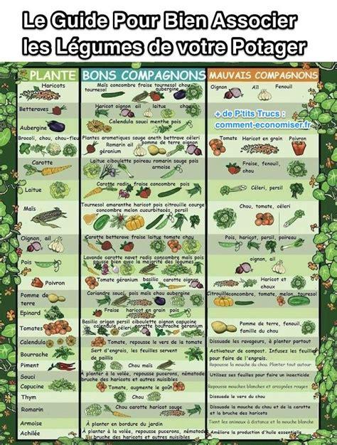 Calendrier Du Potager Le Guide Pratique Pour Bien Associer Les L 233 Gumes De Votre