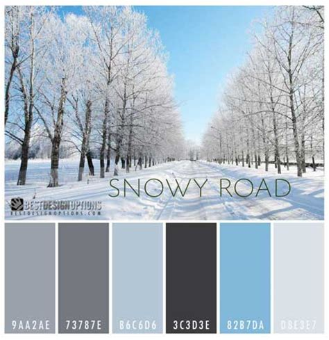 winter color schemes winter colors 9 palettes for web and print designs