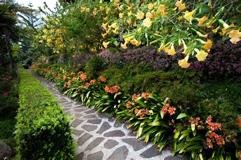 Photos From Madeira Portugal By Photographer Svein Magne Tropical Flower Garden