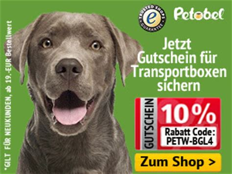 Hundere F Rs Auto Selber Bauen by Die Richtige Hundebox F 252 R Jede Situation