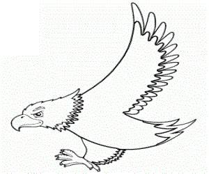 eagle coloring pages preschool free printable eagle coloring pages ideas for preschool