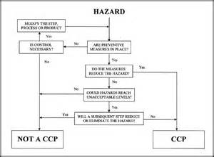 haccp template haccp plan what is it and why its important