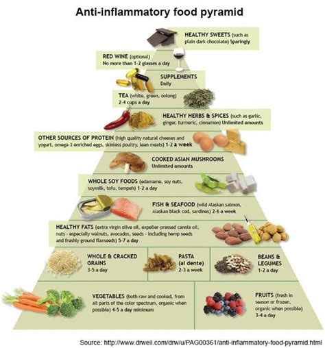Pyramid Gut 1 diet and chronic low grade inflammation optimoz au