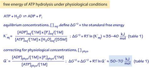 delta h hydration definition 100 bond enthalpy definition calculations u0026