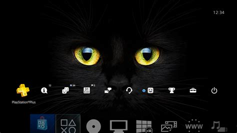 themes in black cat black cat eyes hiq theme on ps4 official playstation