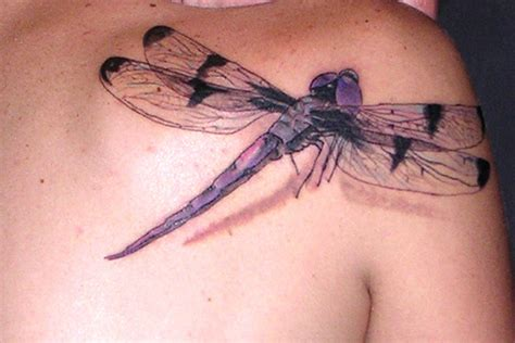 3d dragonfly tattoos cool and beautiful 3d dragonfly tattoos photo gallery