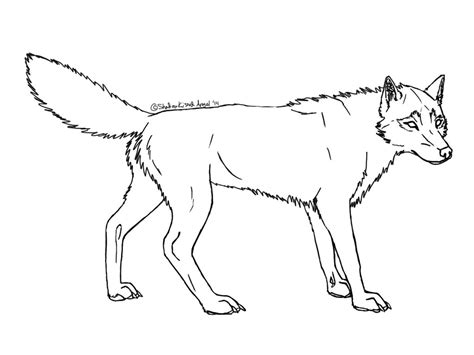realistic wolf coloring pages pictures to pin on pinterest