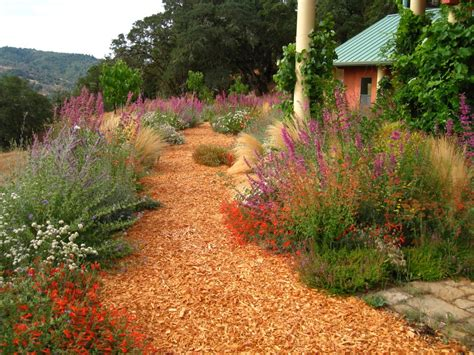 path for drought tolerant garden to feather the nest