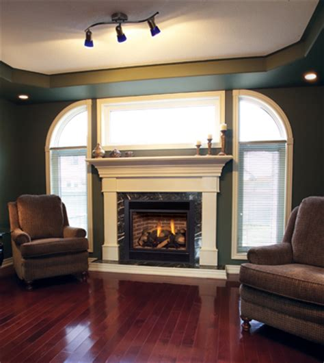 Fireplace Care by Gas Fireplace Care And Maintenance A User S Guide