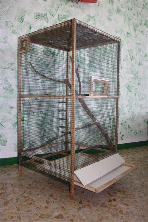 come costruire una gabbia per pappagalli mignololab