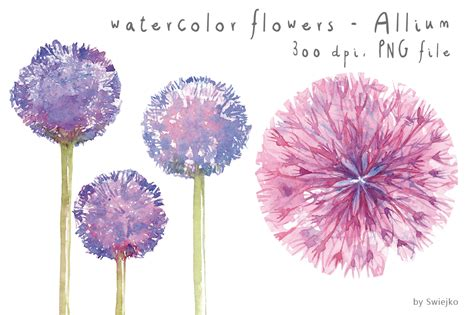 watercolor clipart water color clipart flowery pencil and in color water