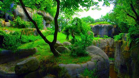 Beautiful Nature Hd Wallpapers 1080p by Green Abstract 1080p Skyrim Wallpaper 1920 215 1080 Wallpaper
