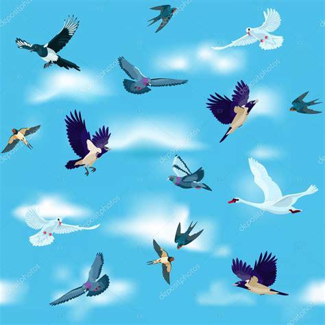 imagenes de jordan volando las aves est 225 n volando en el cielo como patrones sin