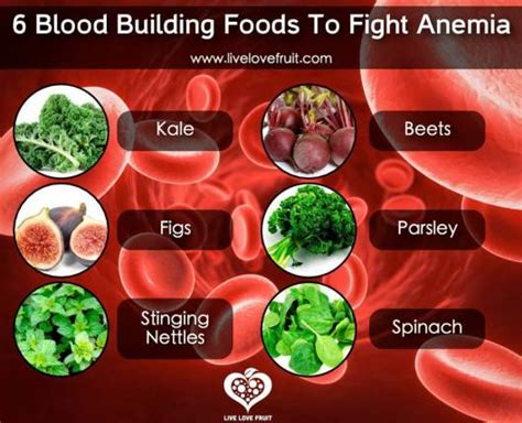 7 Ways To Prevent Anemia by Foods High In Iron For Anemia Byzantineflowers