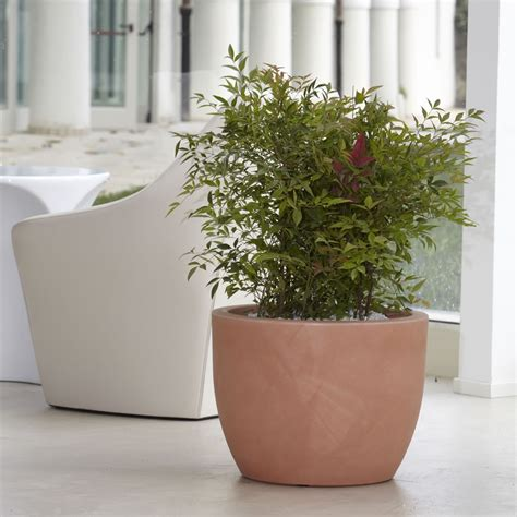 vasi grandi per interni vasi grandi per piante idee per il design della casa