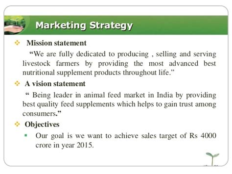 marketing plan of animal feed summerkool