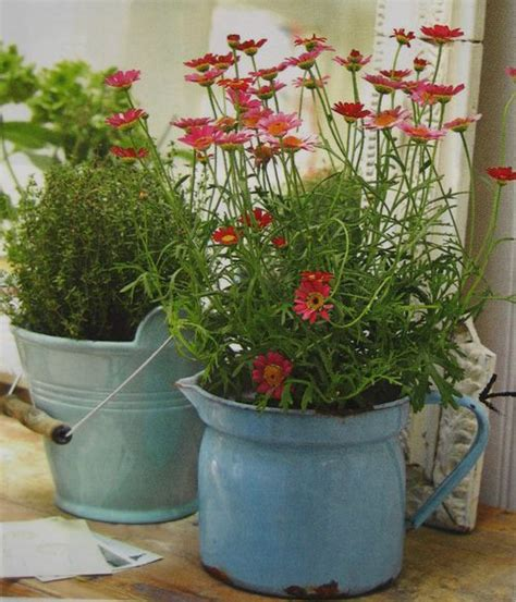 Plant Containers For Sale 25 Best Ideas About Used Containers For Sale On