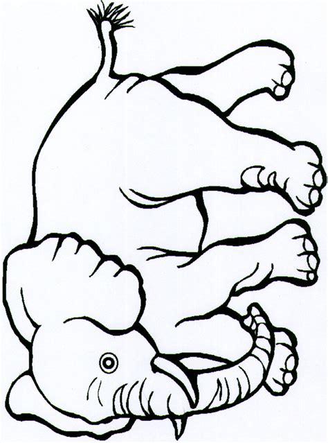 free coloring pages of safari animals
