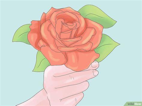 come coltivare le roselline in vaso quando si potano le in vaso cheap free with