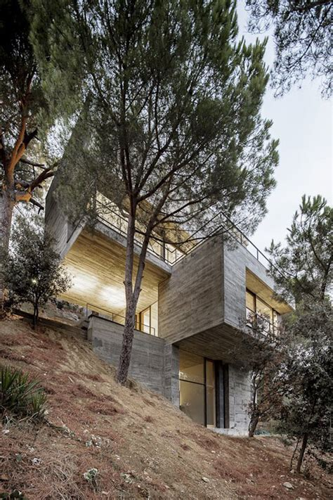 building a house on a steep slope steep slope house design goes vertical just like trees