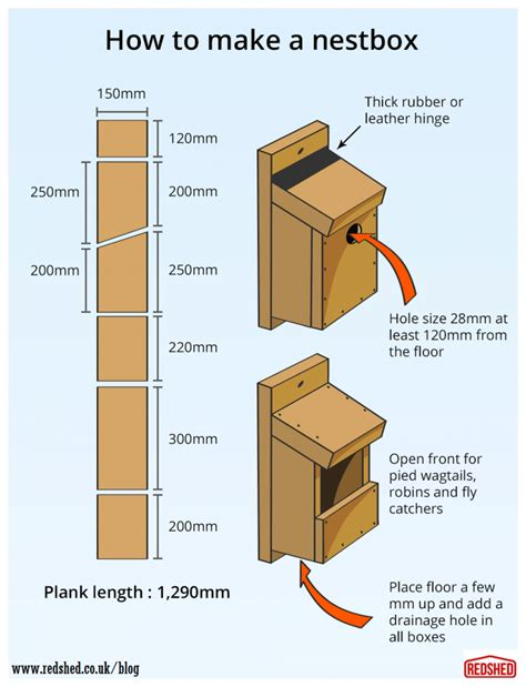 how to build a bird nestbox