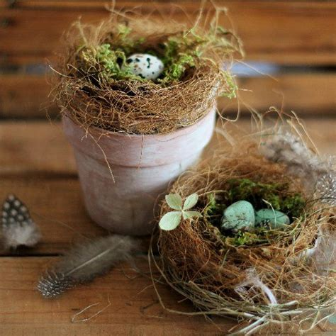 the birdmaker s nest where your treasure will be found safe and sound books 25 best ideas about bird nest craft on nest