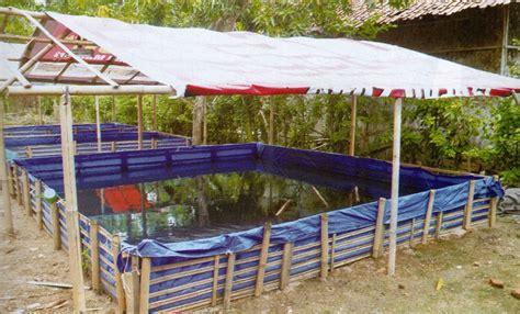Jual Kolam Terpal Bandung peluang usaha ternak lele dengan kolam terpal seri ternak