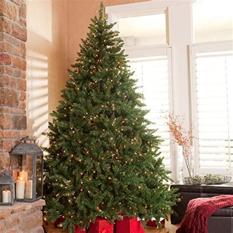 12 foot lighted tree 9 foot prelit tree comfy