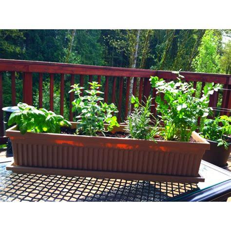 mini herb garden patio mini herb garden 合 quot my garden ideas