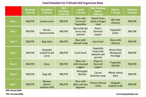 fruit 9 month baby 9 month feeding schedule with free printable food charts
