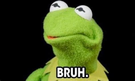 Kermit Meme My Face When - critics express outrage about kermit s new girlfriend
