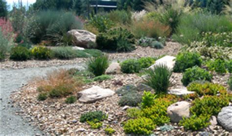 14 Programs That Pay You Money To Install Water Efficient Water Efficient Landscaping