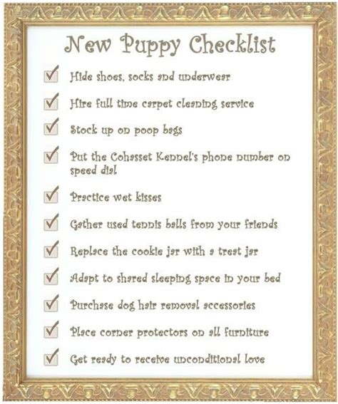 what you need for a puppy checklist new puppy checklist hey kati you ll need this for crosley up what you need