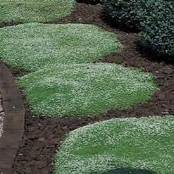 Landscape Edging Ireland Garden Design 60101 Garden Inspiration Ideas