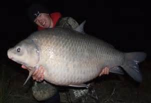 International Fishing News: IGFA news: Hot Catches world record May