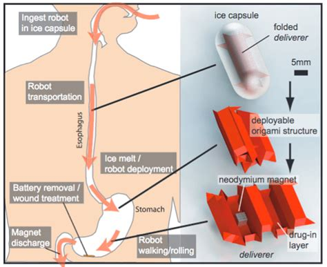 How To Make A Origami Robot - healthcare robotics futuristic alternatives to surgery