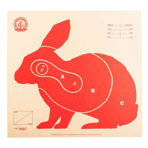 printable rabbit shooting targets 295 best images about target on pinterest pistols