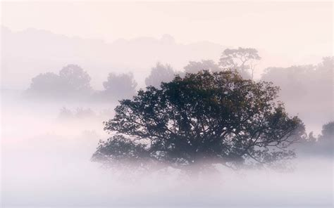 Landscape Photography Keywords Wallpapers Early Morning Fog Wallpapers