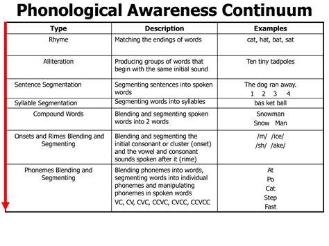 kindergarten activities phonemic awareness phonological awareness continuum phonics pinterest