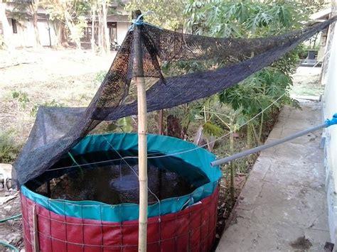 Kolam Terpal Bulat D 4 perikanan organik lutsaka farm budidaya udang supra