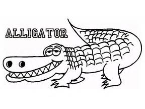 alligator coloring page free coloring pages of alligator and crocodile