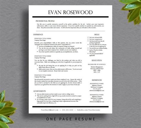 Resume Tips Pages Resume Template Professional Resume And Resume