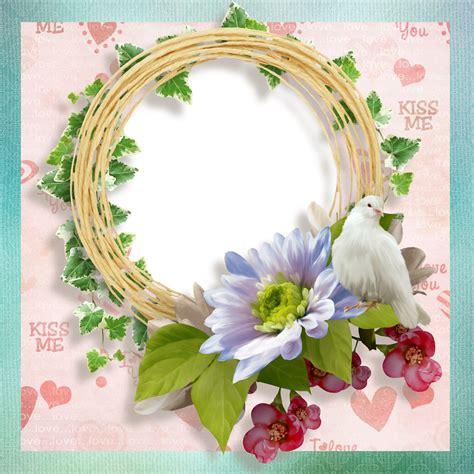 imágenes perronas gratis marcos gratis para fotos marco amor png paloma