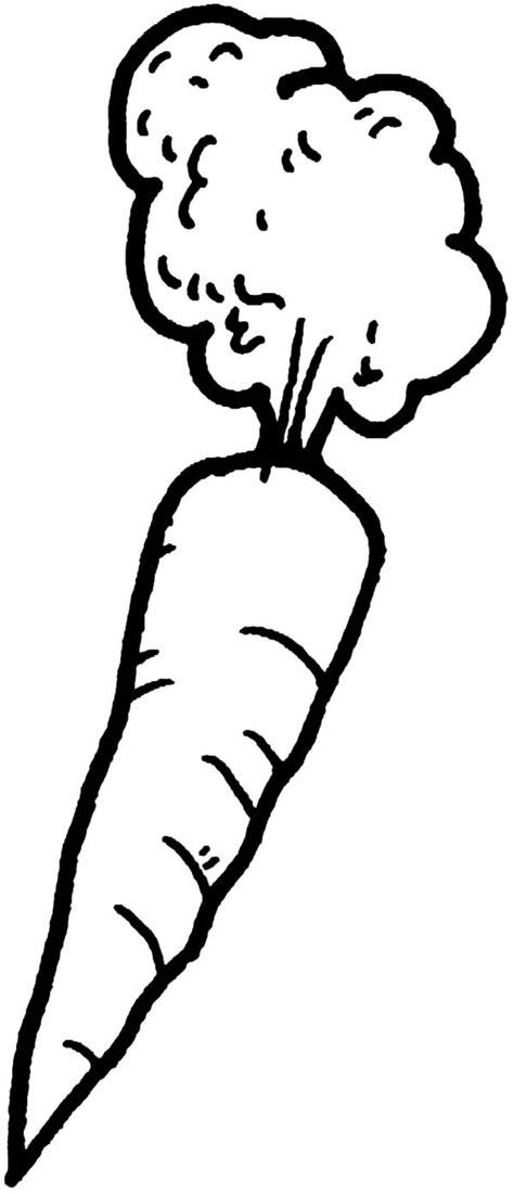 Afro Hair Carrot Coloring Pages Best Place To Color Carrot Coloring Pages