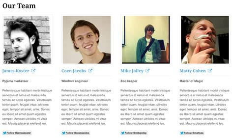 Members Page Template our team by woothemes plugins