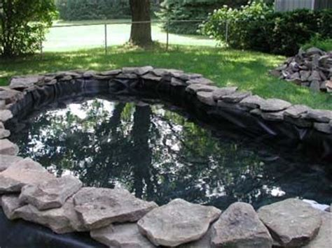 backyard turtle pond diy backyard duck pond specs price release date redesign