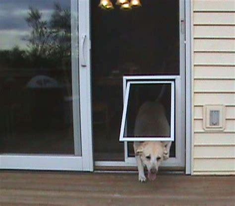 Secure Doggie Door by Security Pet Screen Door